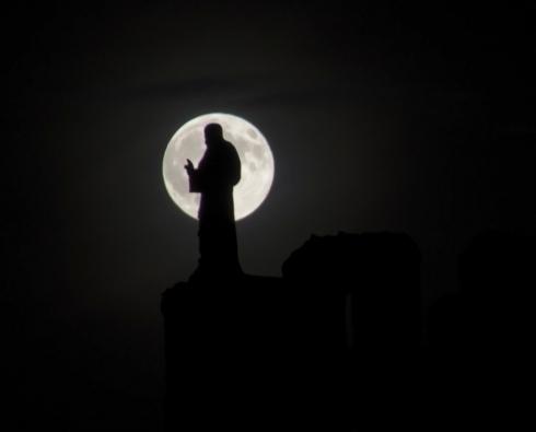 sombras a la luz de la luna - copia