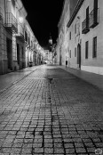 reto_alcala_carlos