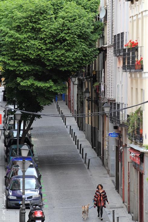 012501 - Madrid_web